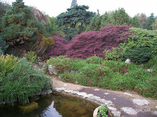Emmetts Garden1