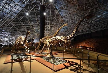 Lufeng Dinosaur Nation Geological Park Museum