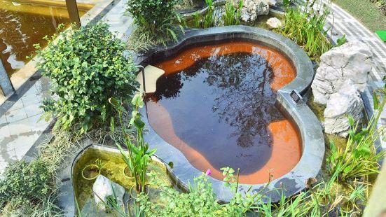 Wuxing Xiangu Hot Springs