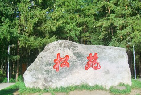 Songyuan Forest Park