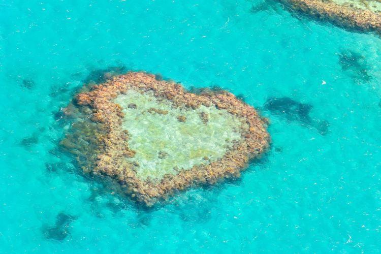 心形大堡礁
