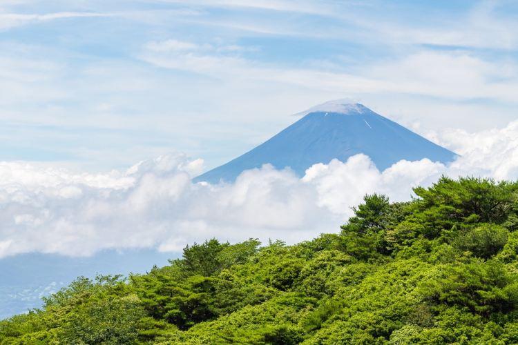富士箱根伊豆國立公園3