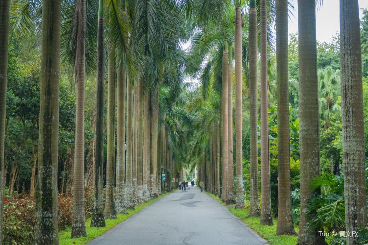 中國科學院華南植物園4