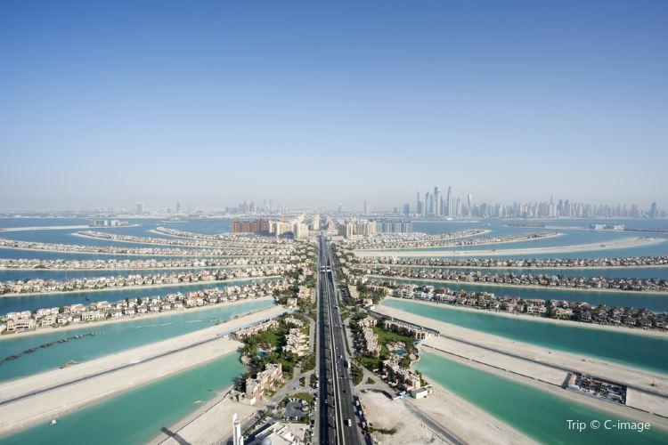 Palm Jumeirah3