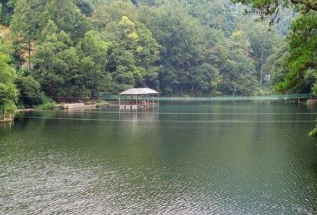 Nanmuyuan Forest Park