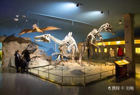 Heilongjiang Provincial Museum