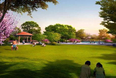 Jihong Park