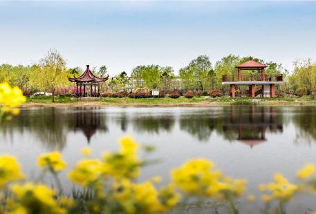 Chaohewan Ecological Garden