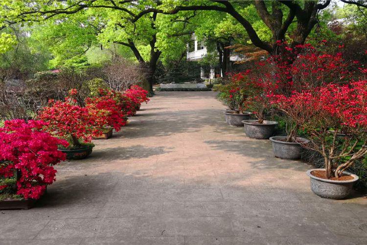 瀟湘奇石館