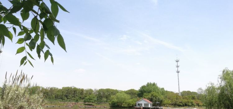 容南風景生態園2