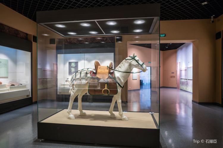 吉林省博物館3