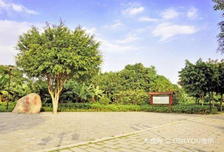 Lanxi Wetland Park