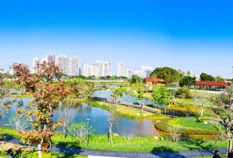 Nanshan Ecology Park