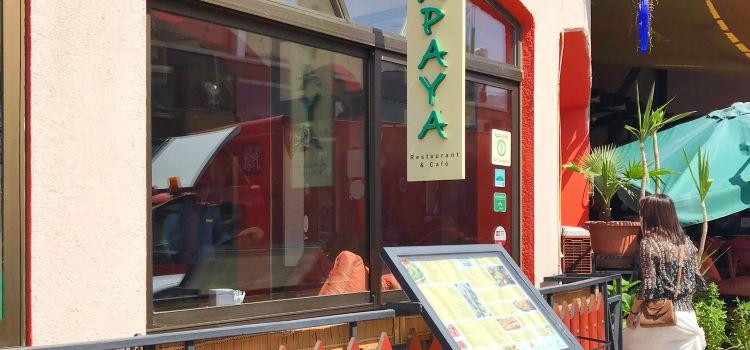 Papaya Restaurant & Cafe3
