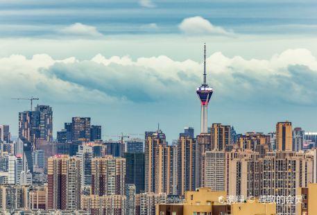 톈푸 판다 타워