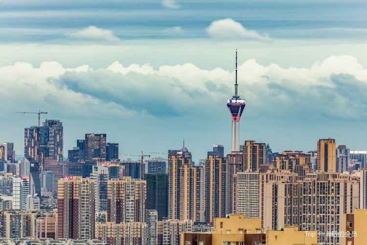 Tianfu Panda Tower