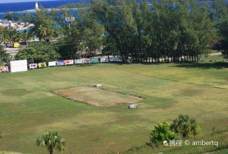 Lucaya Cricket Club