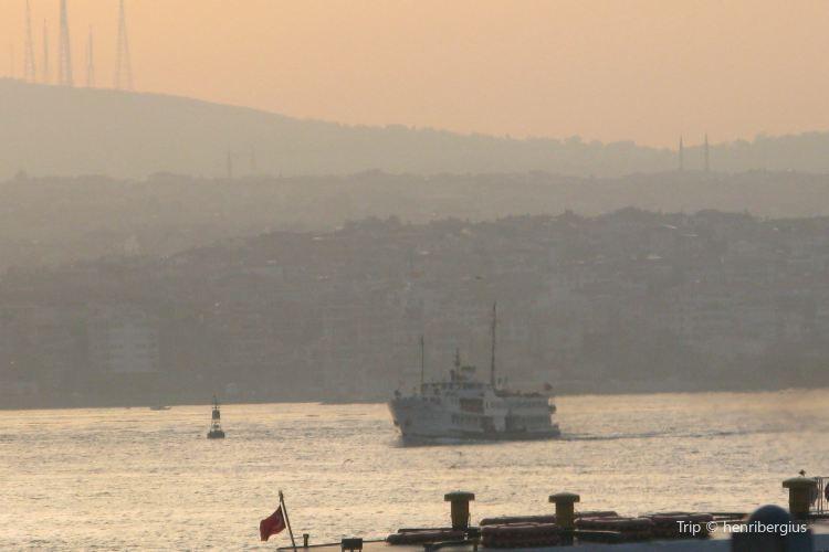 Ferries4