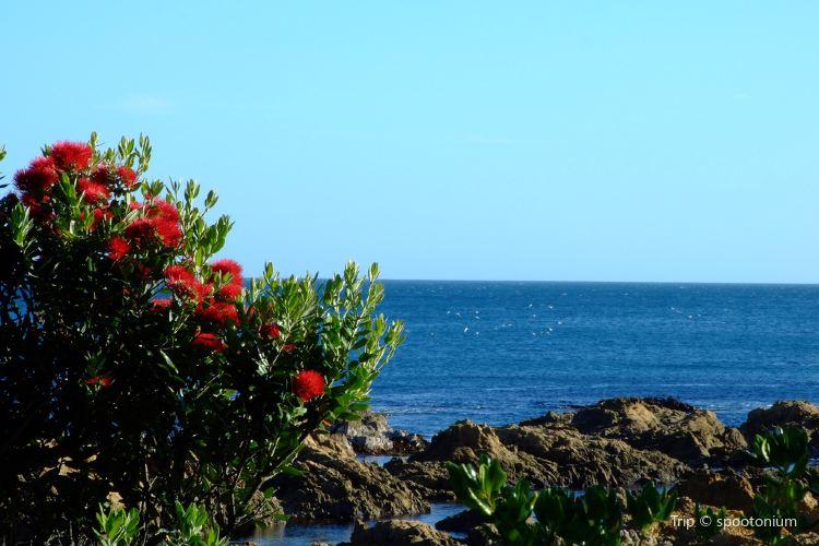 Houghton Bay2