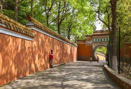 Ciyunjile Temple
