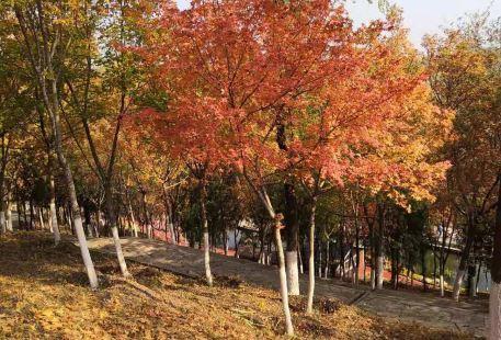文祥湖公園
