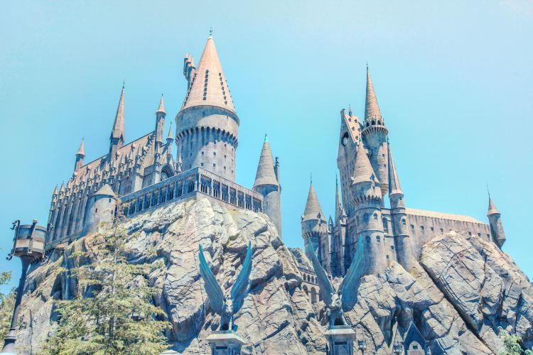 哈利波特的魔法世界