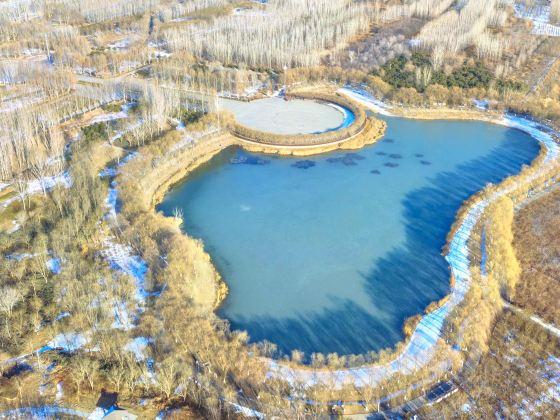 Bazhou Ecology Park