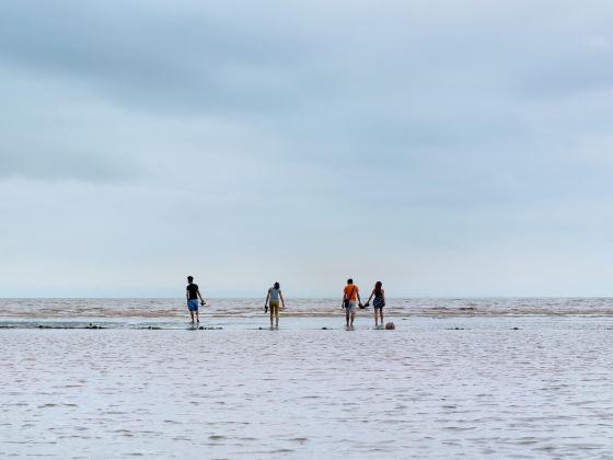 도선 해변