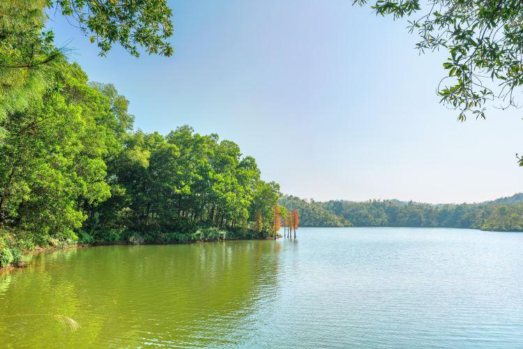 Honghua Lake