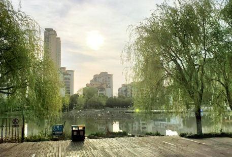 淺水灣水上公園