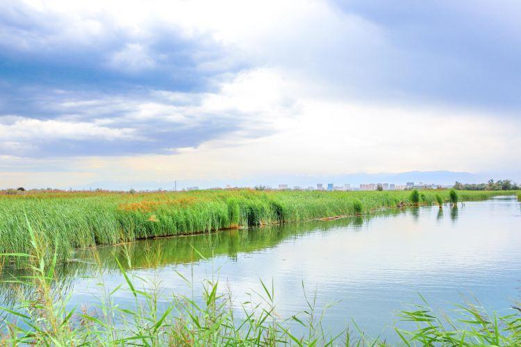 Zhangye National Wetland Park