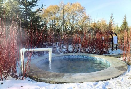Wudalianchi Scenic Area Volcanic Magnetic Mineral Spring