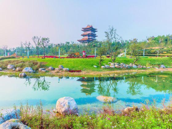 Zhengzhou Garden Expo
