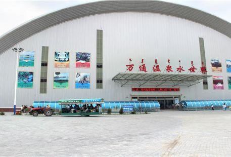 Menggenhua Wantong Wenquan Shui World