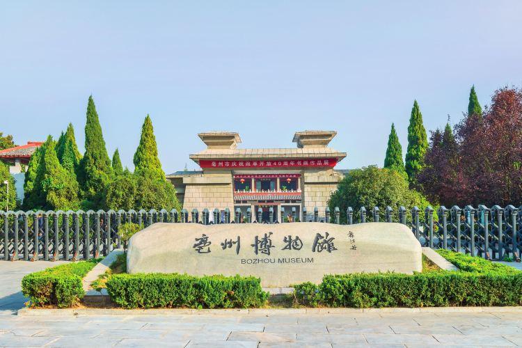 Bozhou Museum