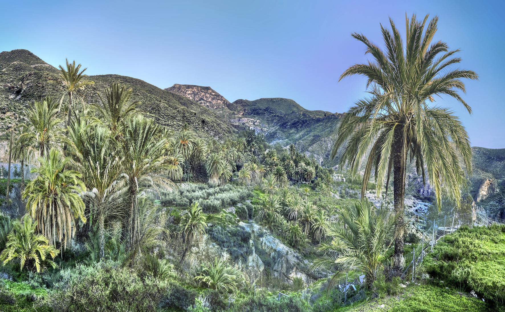 Sierra Alhamilla