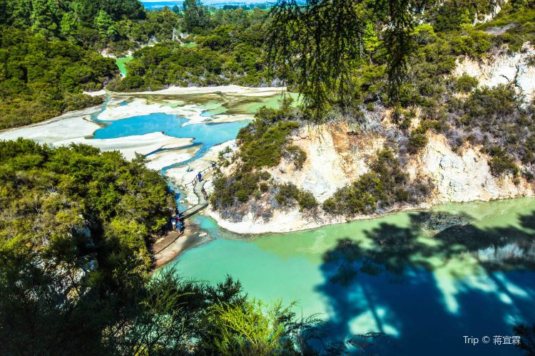 Wai-O-Tapu Thermal Wonderland1
