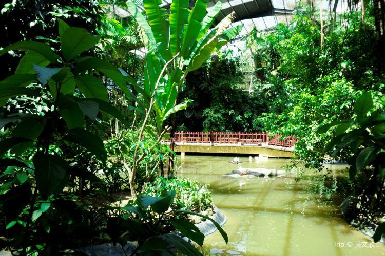 Langkawi Wildlife Park1