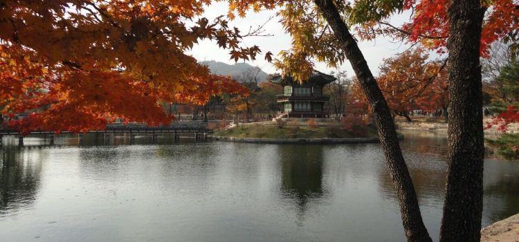 Seomhyanggi