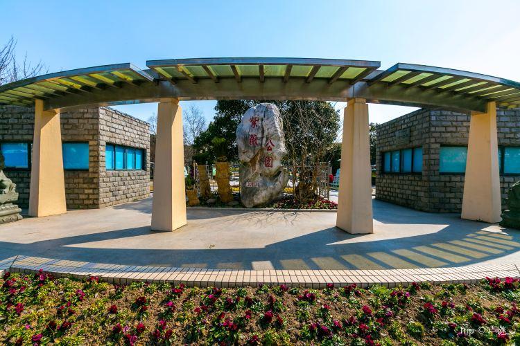 Ziwei Park (North Gate)3