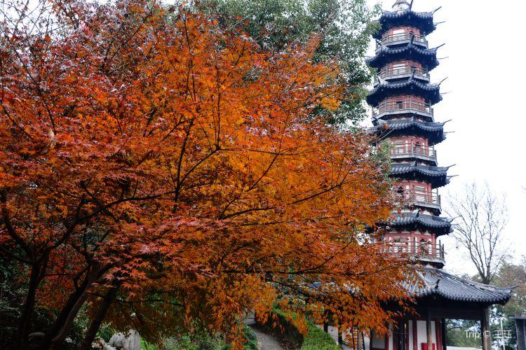 서쪽의 서산공원3