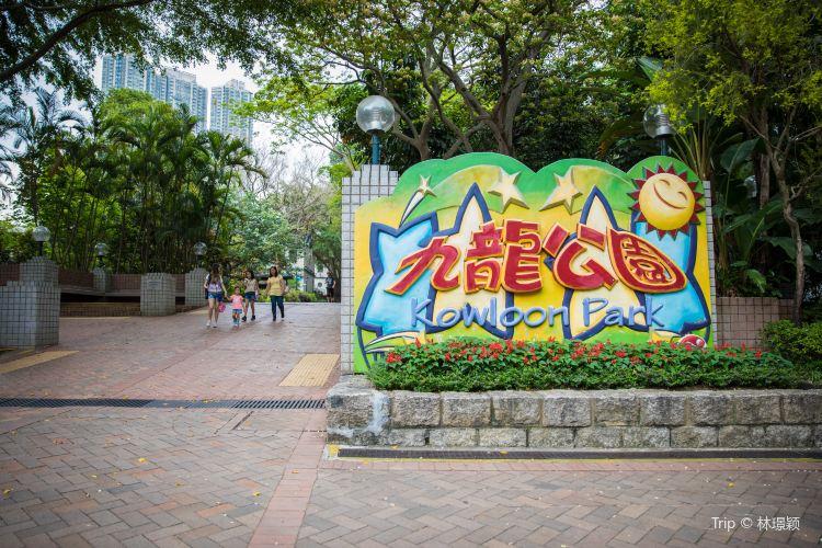 Kowloon Park4