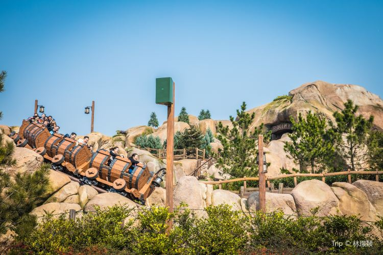 Seven Dwarfs Mine Train2