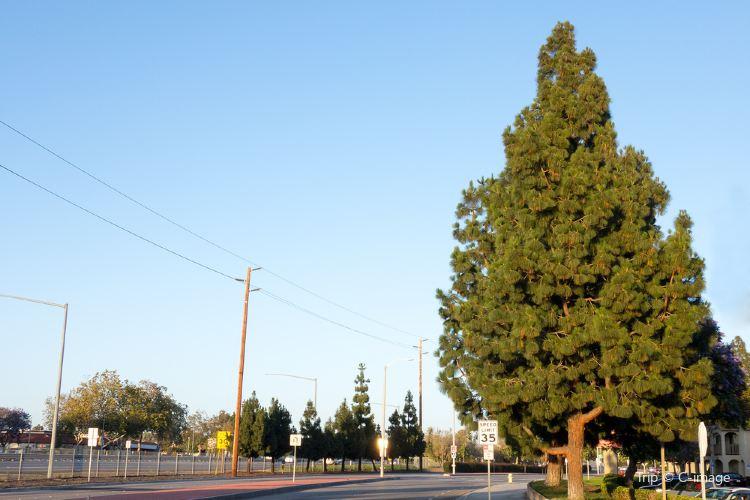 Ventura Boulevard1