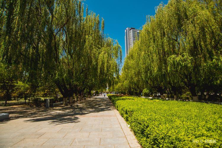 Qingcheng Park2
