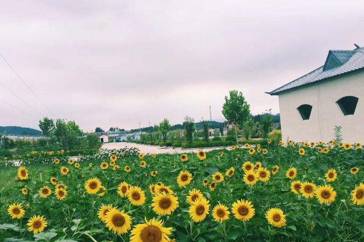 Baiquan Ecological Park