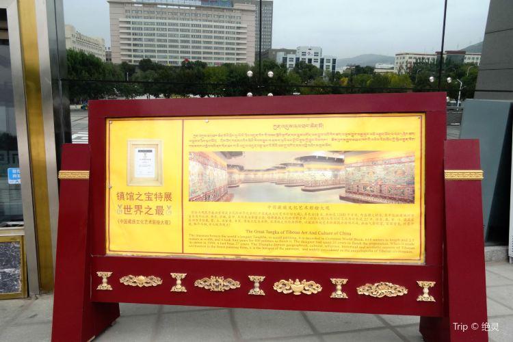청해 티벳문화박물원3