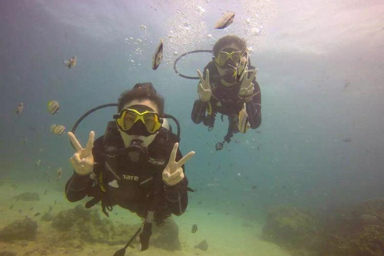 Doljo Beach Diving2