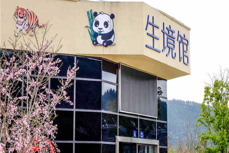 Shangfang Shan Senlin Dongwu World1