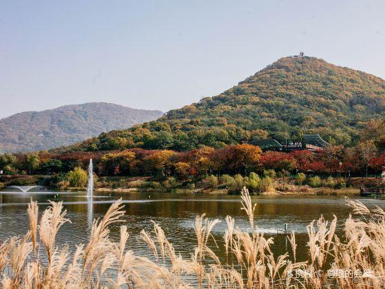 인천 대공원
